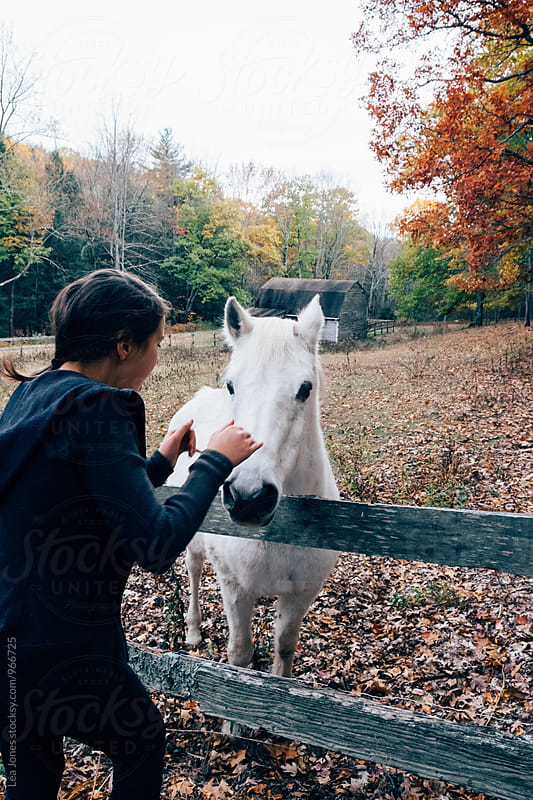 girl patting white horse by Léa Jones for Stocksy United