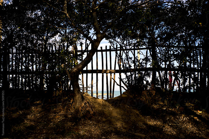Beach Fence by Tommaso Tuzj for Stocksy United