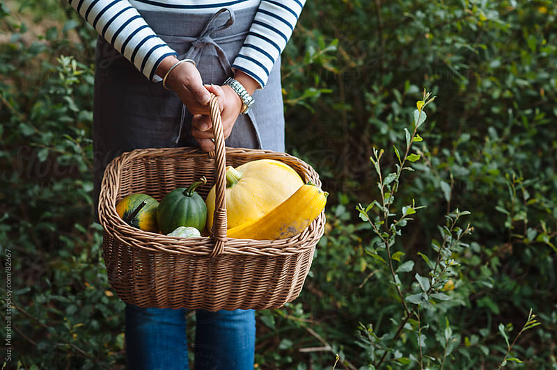 Woman holding a basket containing squash and pumpkin by Suzi Marshall for Stocksy United