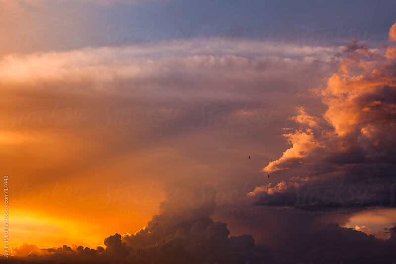 Amazing sky at sunset  by Javier Pardina for Stocksy United