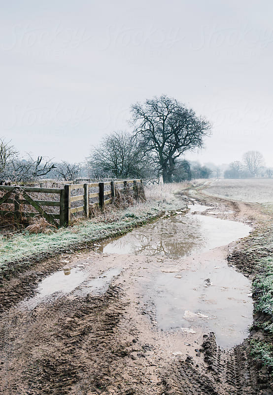 Puddle in a field entrance on a frost covered morning. Norfolk, UK. by Liam Grant for Stocksy United
