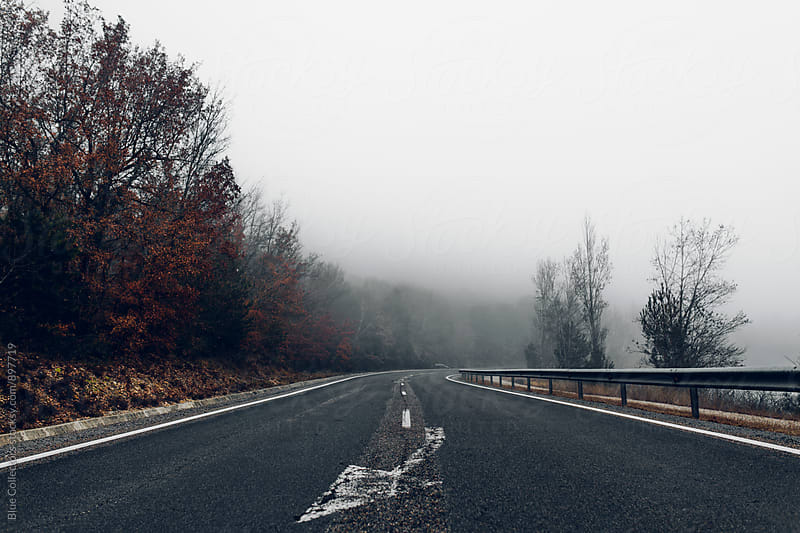 Foggy road view by Jordi Rulló for Stocksy United