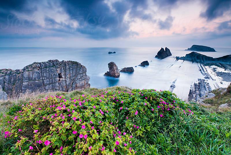 Spring on the coast II by Marilar Irastorza for Stocksy United