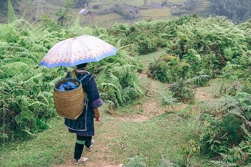 Woman in traditional Hmong clothes hiking on Vietnam rice fields (Sapa) by Alejandro Moreno de Carlos for Stocksy United