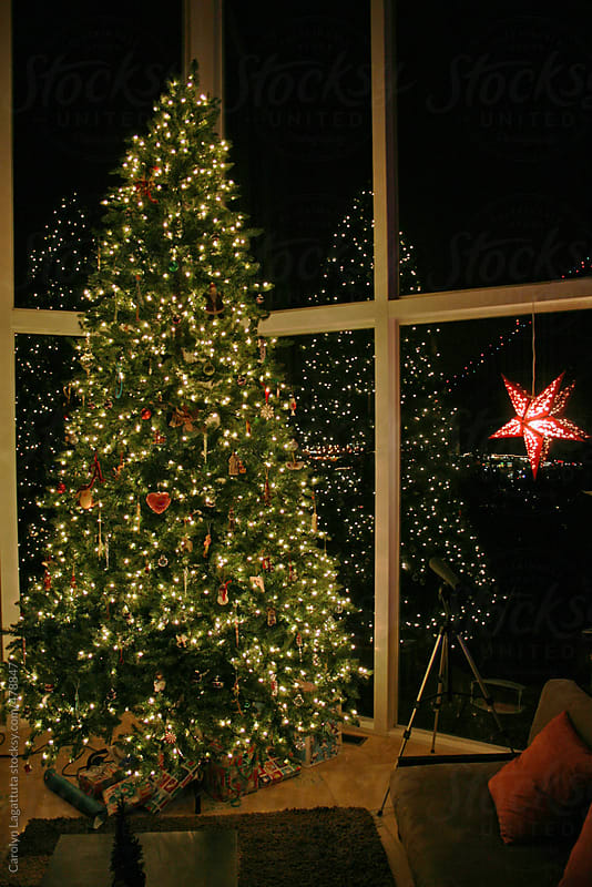 Tall, lit up Christmas tree in front of windows with a reflection by Carolyn Lagattuta for Stocksy United