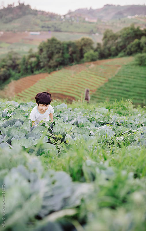 Little child at vegetable farm by Alita Ong for Stocksy United