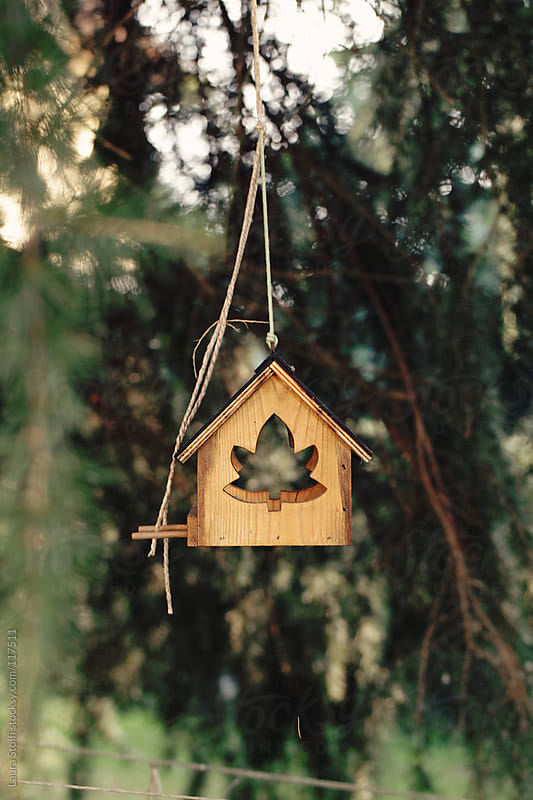House shaped wooden feeder by Laura Stolfi for Stocksy United