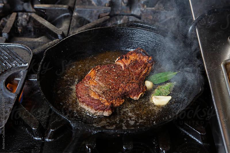 Steak -digital file by Andrew Cebulka for Stocksy United