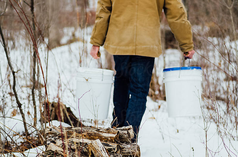 man carrying buckets of sap through snowy woods by Deirdre Malfatto for Stocksy United