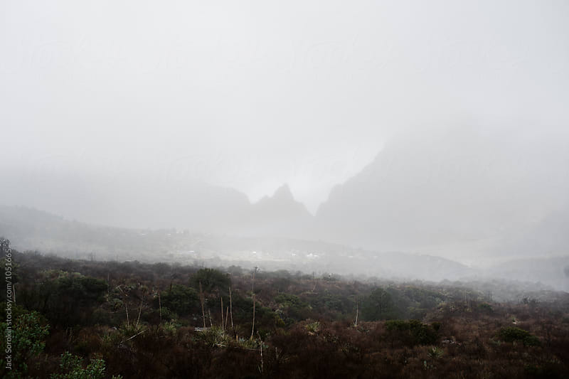Early Morning Fog In The Chisos Basin by Jack Sorokin for Stocksy United