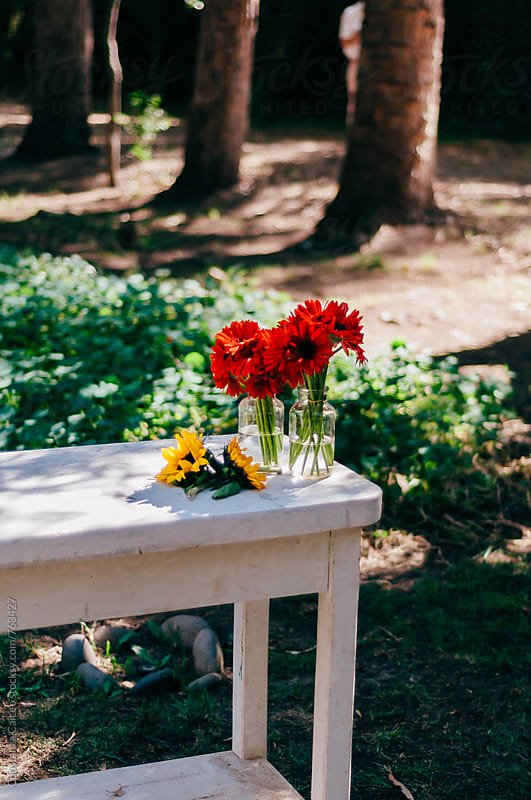 Bouquet arrangement in the middle of the woods on a sunny afternoon by Constanza Caiceo for Stocksy United