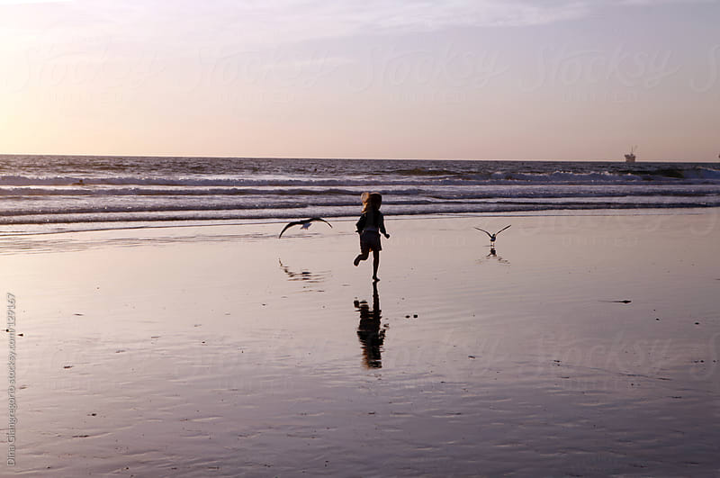 Child running on beach chasing birds by Dina Giangregorio for Stocksy United