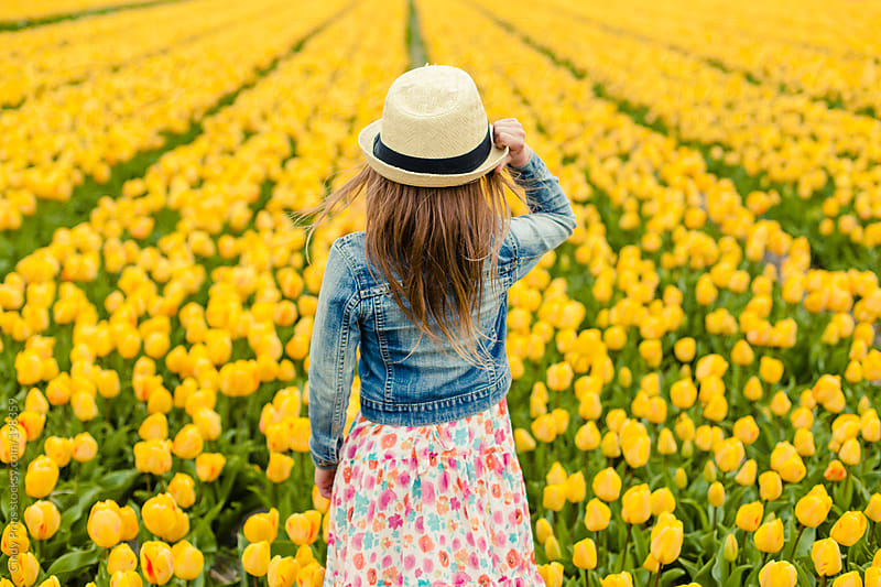 Back view of little girl looking over a field of yellow tulips by Cindy Prins for Stocksy United
