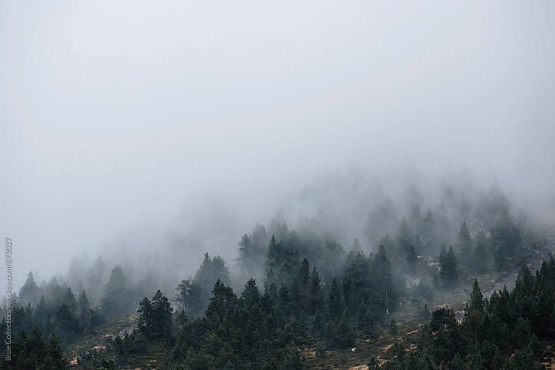 Autumn fog in the mountain by Jordi Rulló for Stocksy United