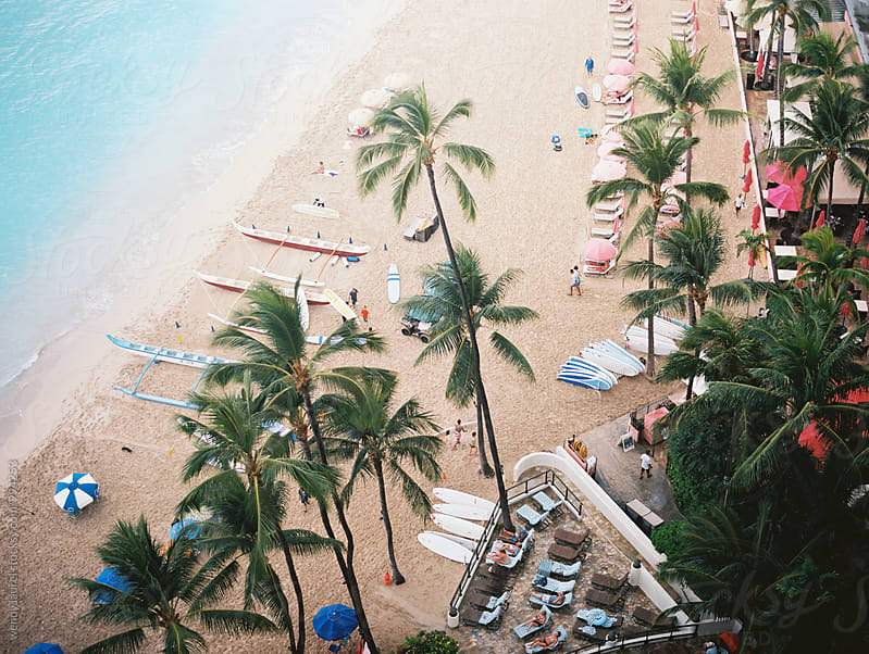 palm trees and hotels on waikiki beach by wendy laurel for Stocksy United