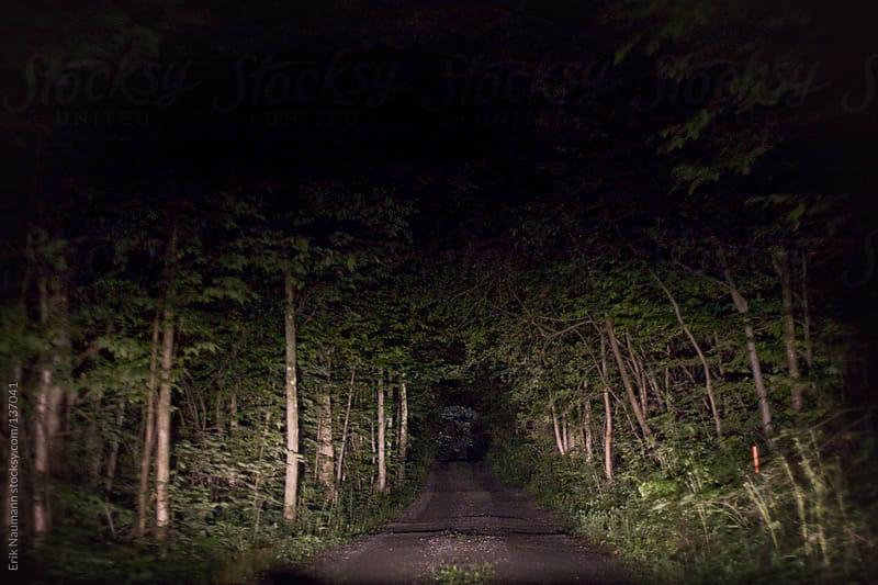 Car headlights illuminate a forest road by Erik Naumann for Stocksy United
