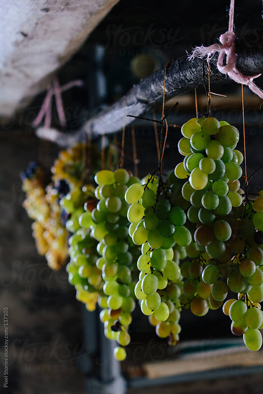 Drying grapes by Pixel Stories for Stocksy United