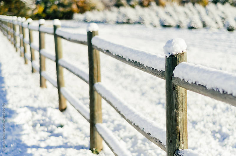Snowy Fence by Julie Rideout for Stocksy United