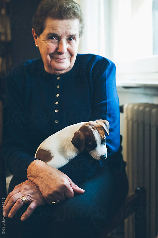 Portrait of a senior woman hugging a puppy sitting at home by GIC for Stocksy United