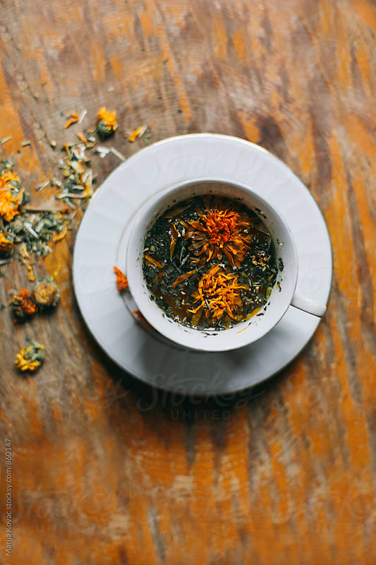 Mixed herbs tea, from above by Marija Kovac for Stocksy United