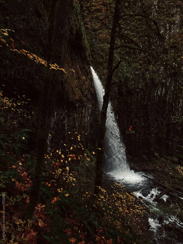 Waterfall in Forest of Fall Color by Kevin Russ for Stocksy United