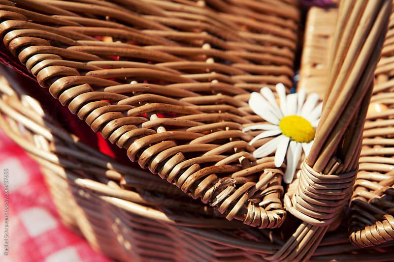 Picknick Basket  by Rachel Schraven for Stocksy United