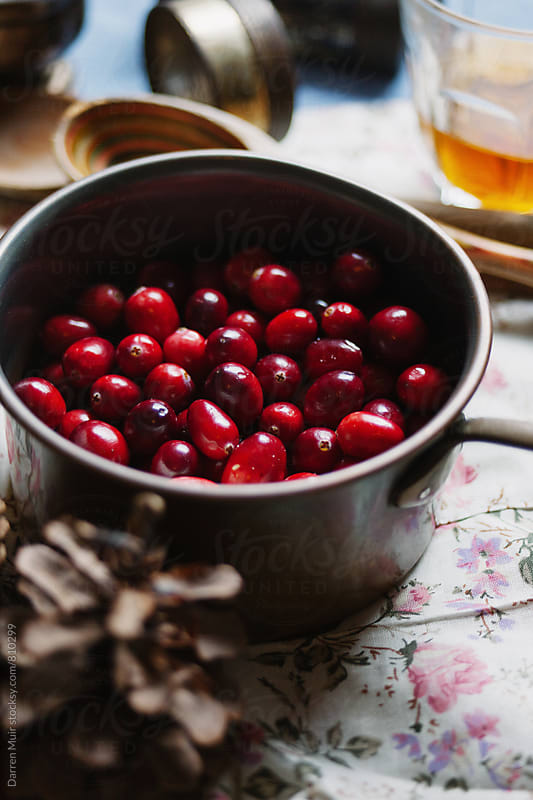 Closeup of a pot of cranberries. by Darren Muir for Stocksy United