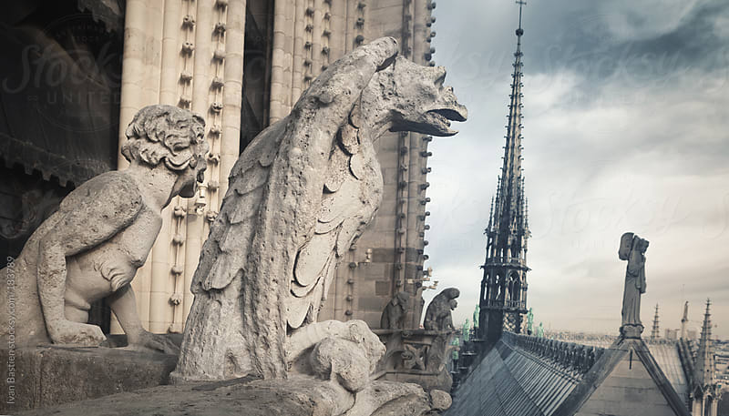 Gargoyles on Notre Dame cathedral in Paris, France by Ivan Bastien for Stocksy United