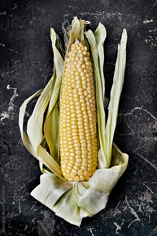 Corn on the cob by James Ross for Stocksy United
