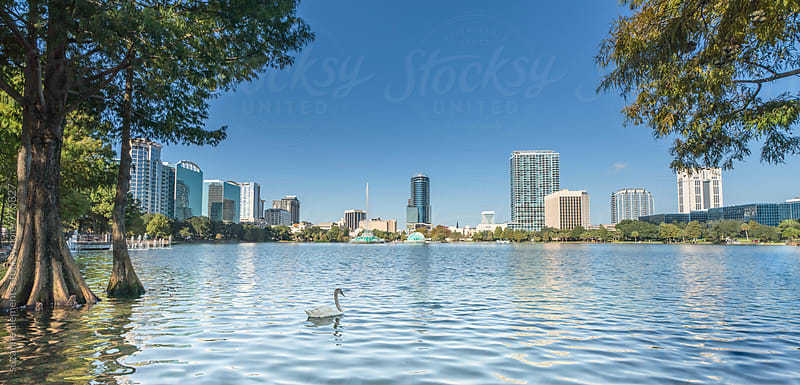 Orlando City Skyline Florida by suzanne clements for Stocksy United