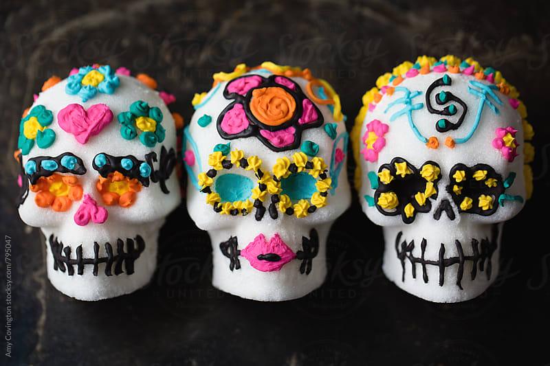 Sugar Skulls by Amy Covington for Stocksy United