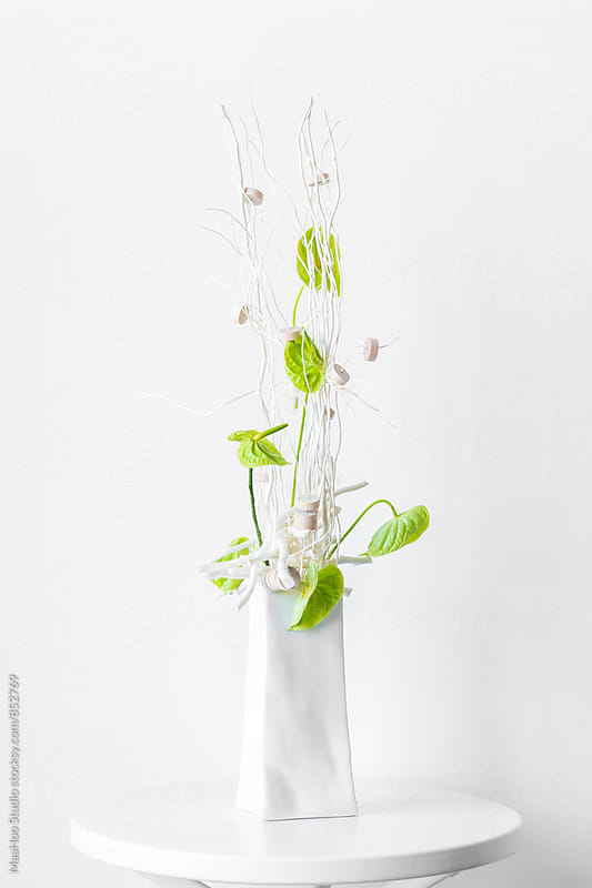 Floriculture of anthurium  by MaaHoo Studio for Stocksy United