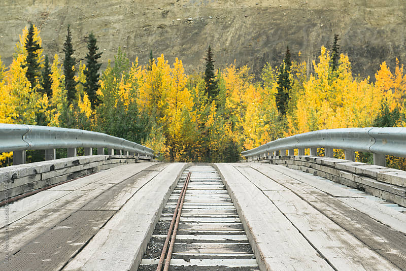 wooden bridge leading to trees showing fall colors by Tara Romasanta for Stocksy United