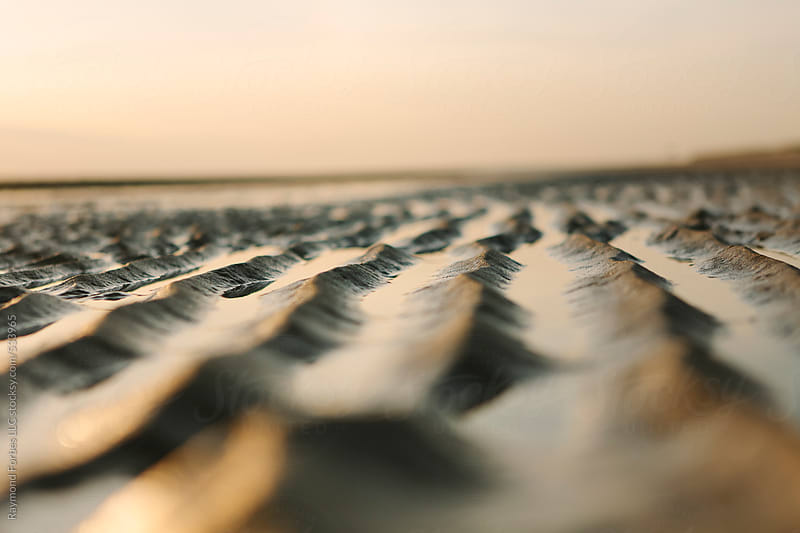 Sand Ripples by Raymond Forbes LLC for Stocksy United
