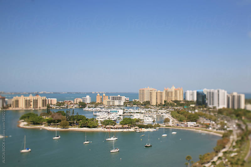 Overlooking The Downtown Sarasota Florida Harbor by ALICIA BOCK for Stocksy United
