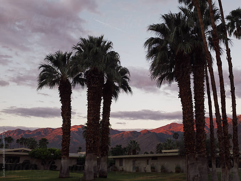 Sunrise over Palm Springs. by Lucas Saugen for Stocksy United