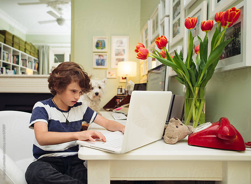 Boy using a computer in a home office by Angela Lumsden for Stocksy United