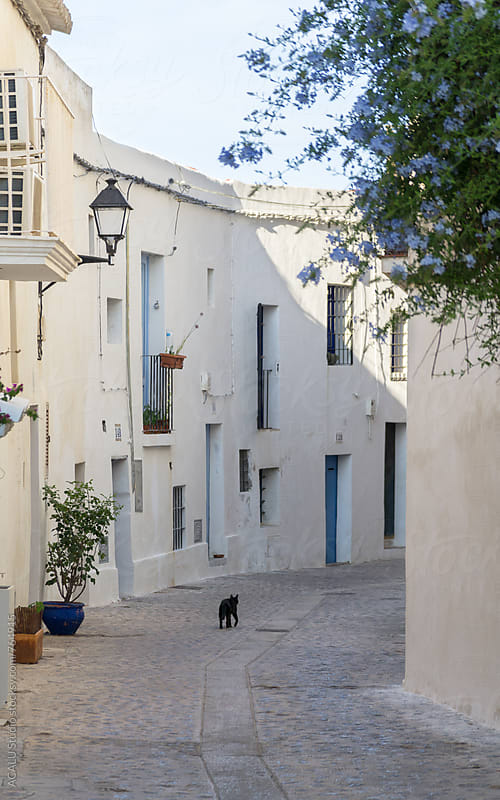 Black cat walking down an empty street in Ibiza by ACALU Studio for Stocksy United