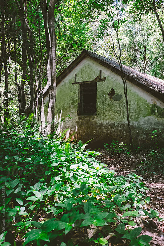 Abandoned cottage in a forest by Micky Wiswedel for Stocksy United
