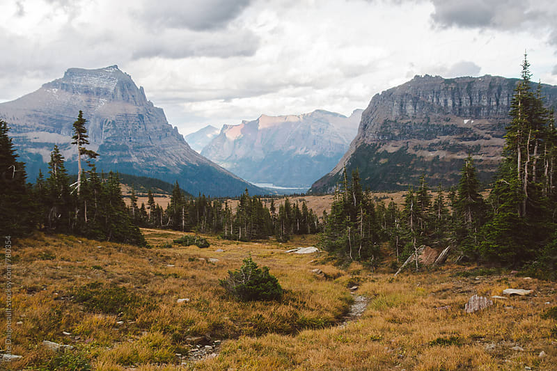 Autumn in Glacier National Park by Kate Daigneault for Stocksy United