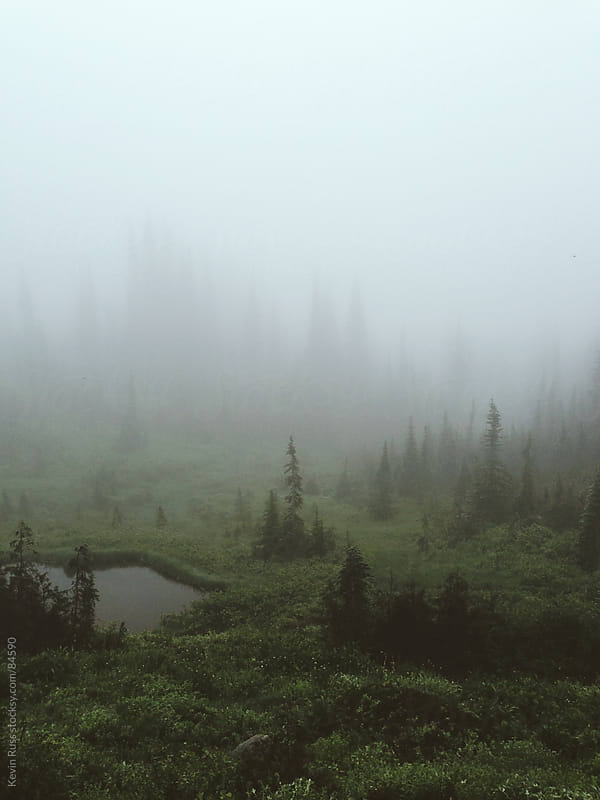 Foggy Mountain Landscape by Kevin Russ for Stocksy United