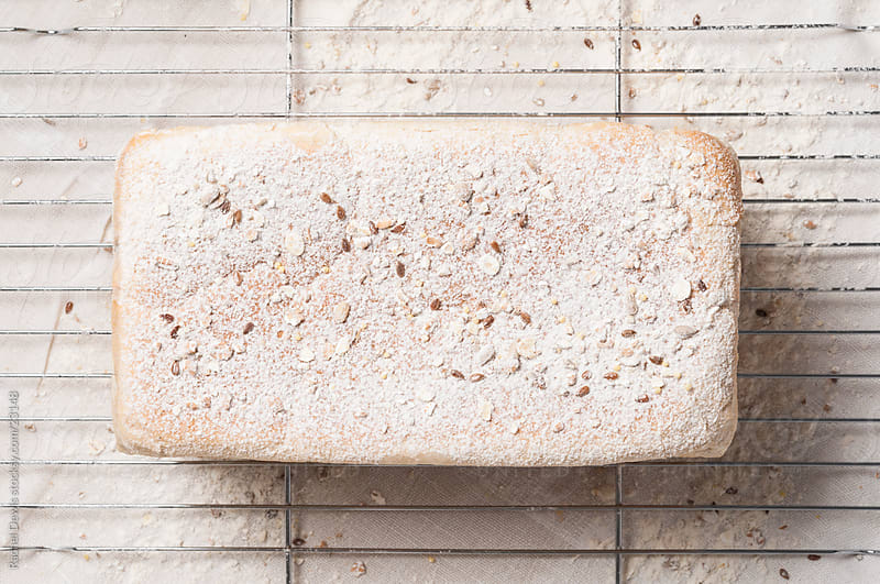 Daily bread. by Rachel Dewis for Stocksy United