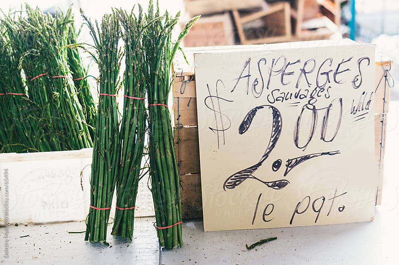Wild asparagus bundles for sale at an outdoor market by Deirdre Malfatto for Stocksy United