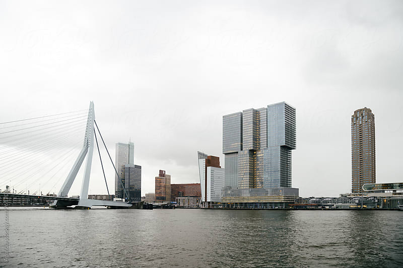 Rotterdam Skyline by Agencia for Stocksy United