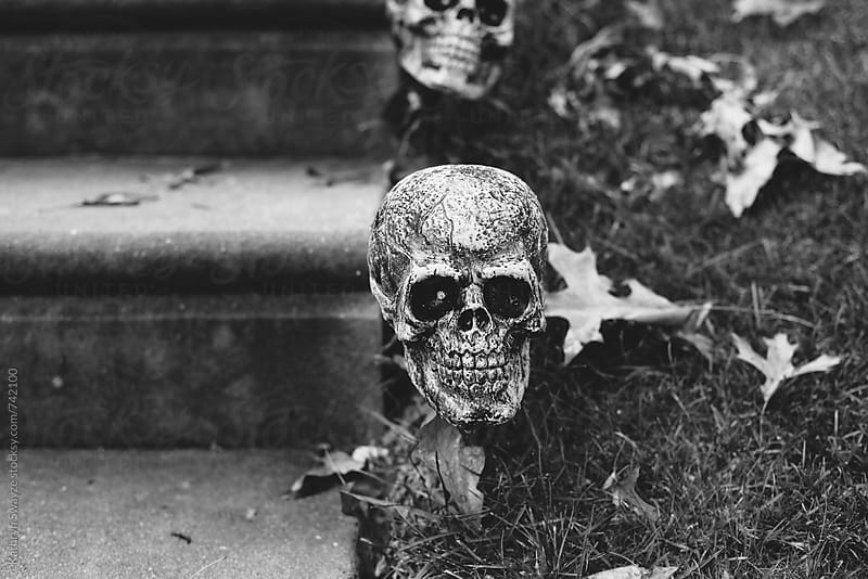 Skulls line the steps of a home's front walk by Kathryn Swayze for Stocksy United