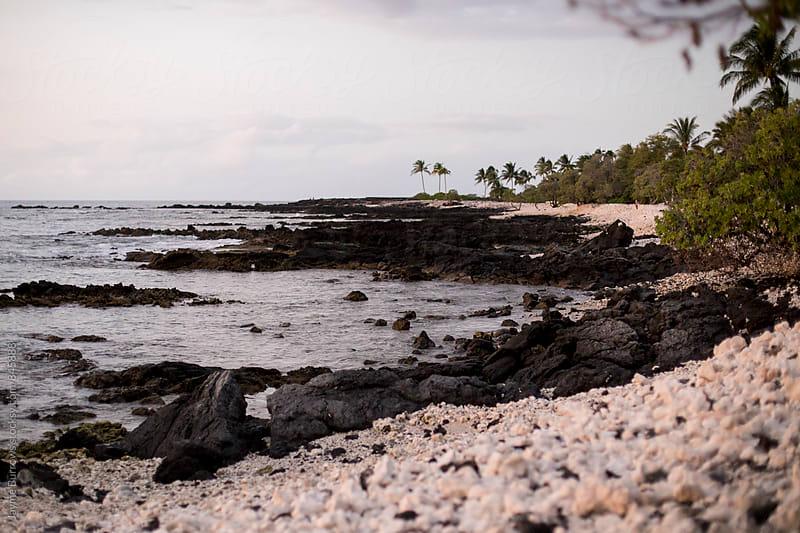 Hawaiian Beach by Jayme Burrows for Stocksy United