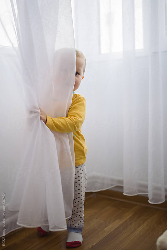 Toddler hiding behind window curtain  by RG&B Images for Stocksy United