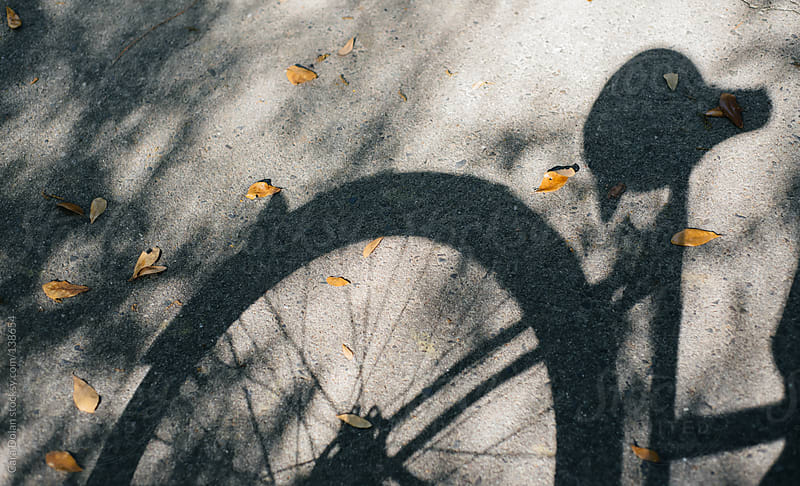 Shadow of a bicycle wheel and seat on a path with dried leaves by Cara Dolan for Stocksy United