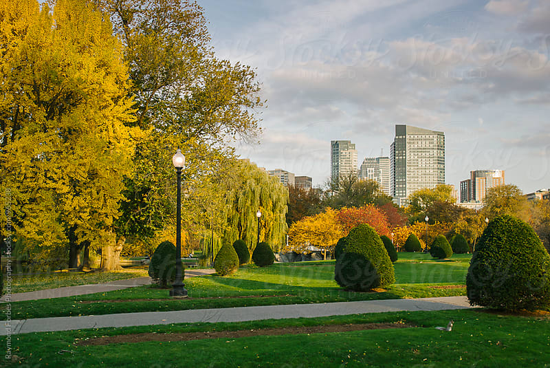 Boston Public Garden in Autumn by Raymond Forbes LLC for Stocksy United