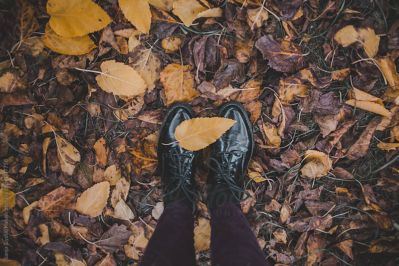 Candid shot of a pretty vintage black shoes on a floor full of fallen yellow leaves by Sanja (Lydia) Kulušić for Stocksy United